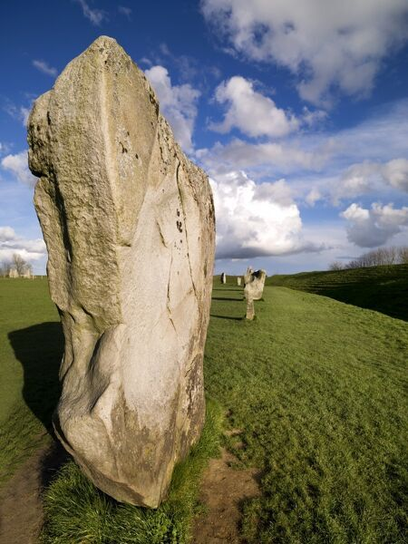 AVEBURY STONE CIRCLE, Wiltshire. View of the sarsens which form part of the south west side of the circle