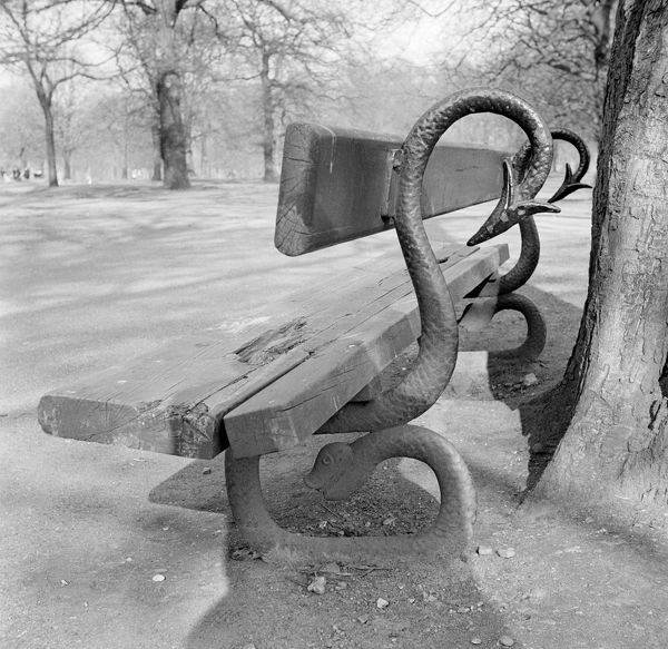 KENSINGTON GARDENS, Westminster, London. Detail of an ornamental serpentiform bench in Kensington Gardens. Photographed by Eric de Mare. Date range: 1945-1980