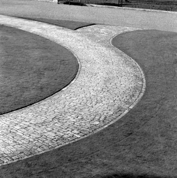 KEW GARDENS, London. A curving paved path through closely mown lawn. Photographed by John Gay. Date range: January 1962 - May 1964
