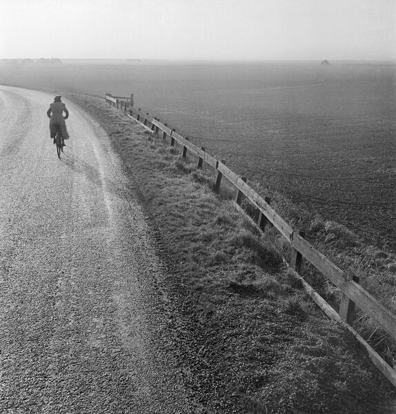A woman cycling along a road raised up above the surrounding fenland. Photographed by John Gay in the early 1950s