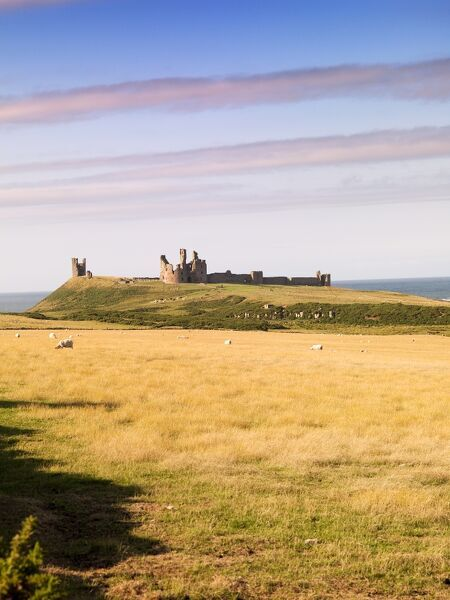 DUNSTANBURGH CASTLE, Craster, Northumberland. View of the castle from west of the pathway on south side