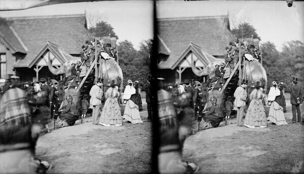 Zoological Gardens, Regents Park, London. Stereoscopic view showing members of the public mounting an elephant for a ride. Photographed by York & Son, 1870-1900