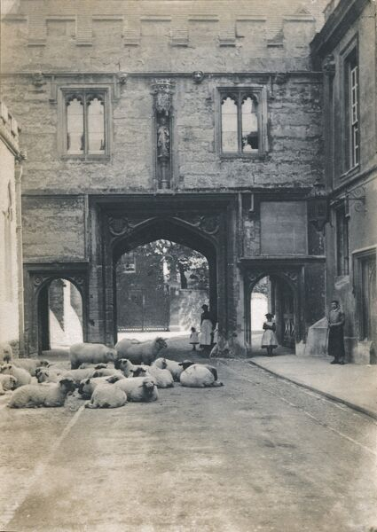 Abbey Gate, Abingdon, Oxfordshire. West view of the Abbey Gateway, showing sheep on the street in the foreground withmen and women standing back. Reproduced from an original print, but first photographed before 1890