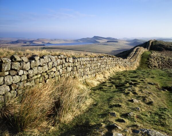 HADRIAN'S WALL, Northumberland. Cuddy's Crags, near turret 37A. The morning light illuminates the wall with Broomlee Lough in the distance. hadrian