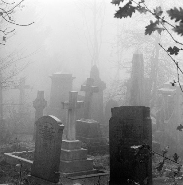 HIGHGATE CEMETERY, Hampstead, London. Gravestones and tombs standing in the mist in the West Cemetery. Photographed by John Gay in 1981