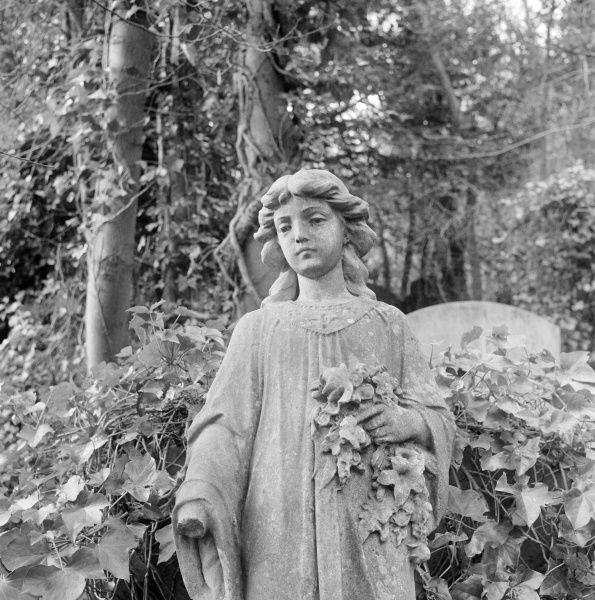 HIGHGATE CEMETERY, Hampstead, London. Statue of girl holding lillies in the West Cemetery. Photographed by John Gay in 1987