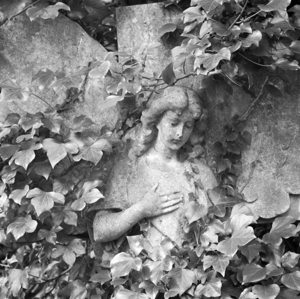 HIGHGATE CEMETERY, London. The statue of a young woman marking an overgrown grave in the West Cemetery. Photographed by John Gay between May 1989 - Oct 1989