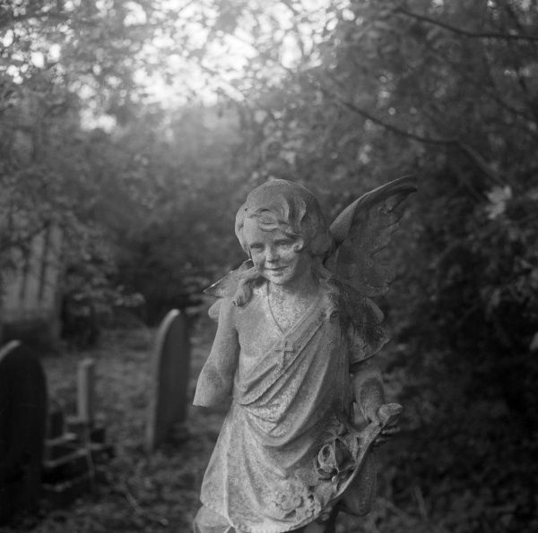 HIGHGATE CEMETERY, Hampstead, London. Statue of a child angel with missing arm in the East Cemetery. Photographed by John Gay, October 1987