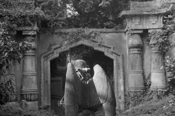 HIGHGATE CEMETERY, Hampstead, London. Looking towards the entrance to the Egyptian Avenue, with the statue of an angel in the foreground, in the West Cemetery. Photographed by John Gay in October 1983