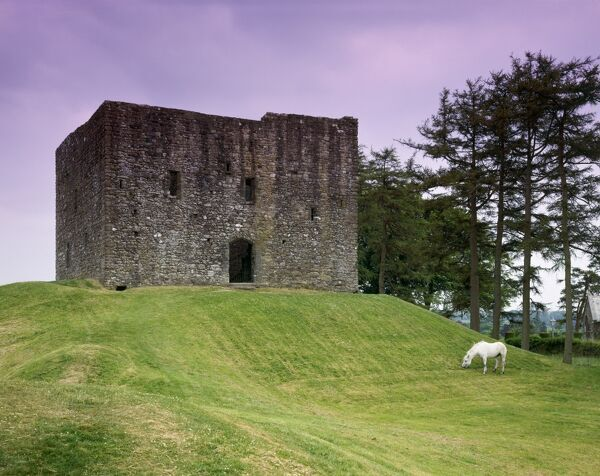 LYDFORD CASTLE, Devon. The 13th century tower keep with horse grazing