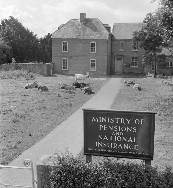 A Georgian house with cows on the front lawn probably in Herefordshire, occupied by the Ministry of Pensions and National Insurance. Photographed by John Gay between 1945 - 1955