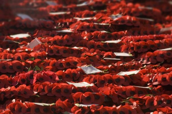 THE CENOTAPH, Whitehall, London. Detail of remembrance day poppy wreaths
