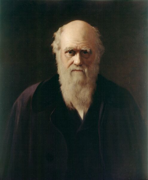 "DOWN HOUSE, Downe, Kent. Portrait "" Charles Darwin "" by Reilly"