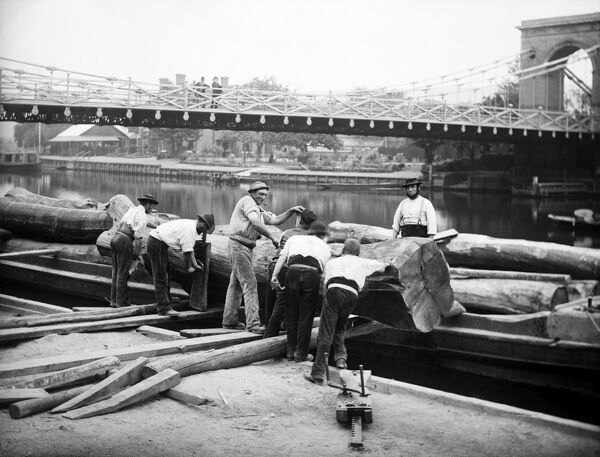 MARLOW, Wycombe, Buckinghamshire. Workmen loading large logs onto a river barge, using a form of jack. The 19th century suspension bridge over the Thames can be seen in the background. Photographed by Henry Taunt (active 1860 - 1922).