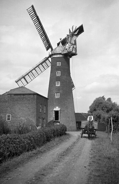 SHEPHERDS MILL, Upwell, Cambridgeshire. This brick tower mill was built in 1829 and was five storeys high with and ogee cap. Photographed here in 1935, it has since been converted to a restaurant and hotel. The miller can be seen here driving a horse and cart