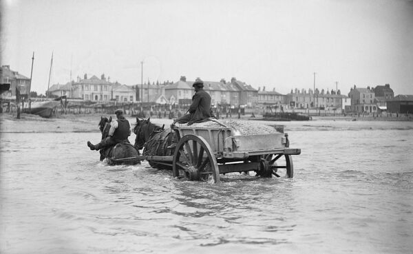 Shoreham By Sea, West Sussex. A partly-submerged horse-drawn ballast cart in the sea off Shoreham Harbour. Photographed by E J Bedford between 1905 and 1925