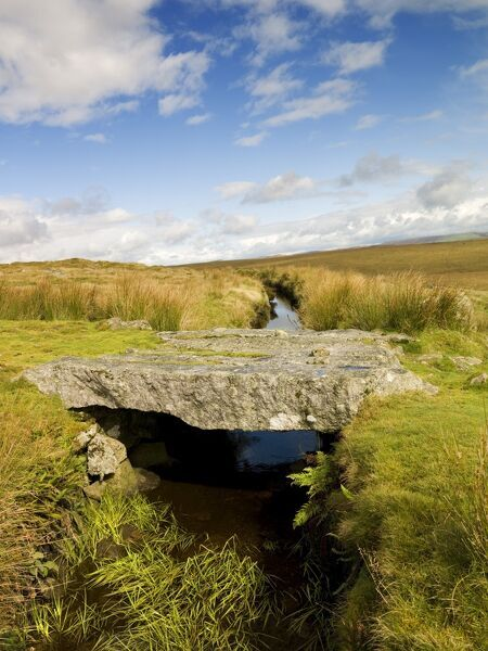DARTMOOR, Devon. General view of leat and stone bridge