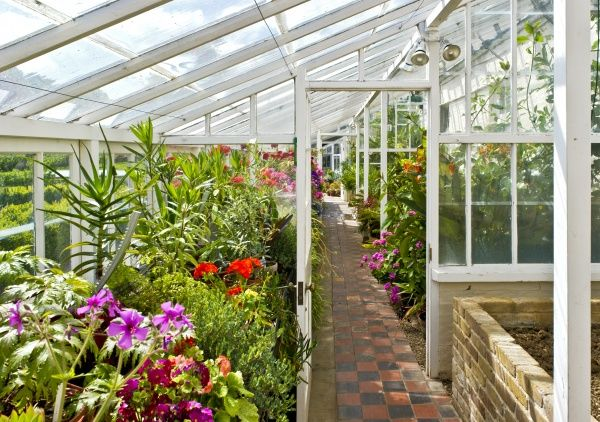 WALMER CASTLE AND GARDENS, Kent. Interior view of the Greenhouse