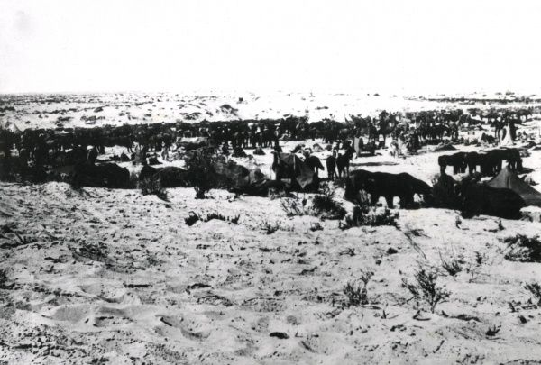 Camp of the Australian 5th Light Horse Regiment on the sand near Gaza during the First World War. Date: 1917