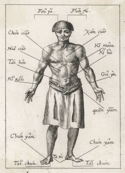 Travellers in the East bring back accounts of different medical processes : this Chinese diagram of acupuncture points is published in a German scientific journal
