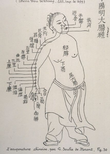 ACUPUNCTURE The Meridian of the Large Intestine