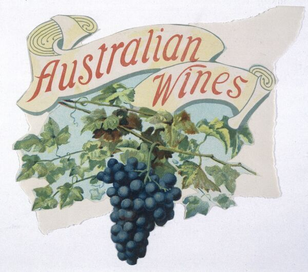 A bunch of black grapes promoting Australian wine