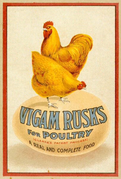 Vigam Rusks for Poultry - a real and complete food