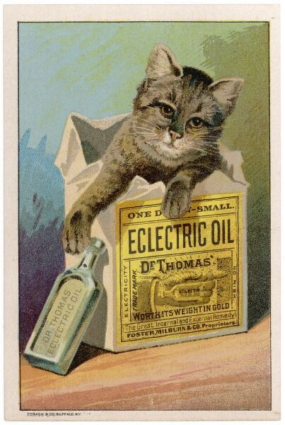 Dr Thomas' Eclectric Oil - the great internal and external remedy