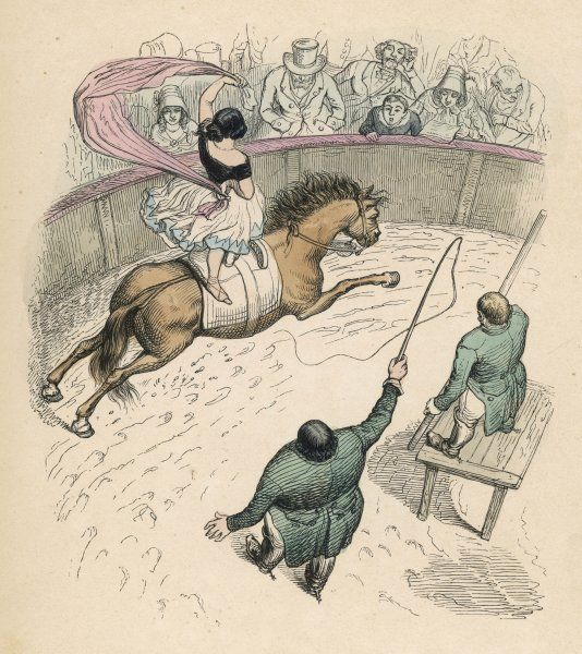 Aerial view of a circus equestrienne - a horseback rider stands on the back of her mount as it canters round the ring