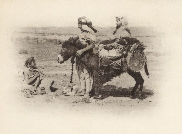 Algeria - A man leading a little donkey carrying a wide array of household goods, textiles and a girl. They are talking to a boy seated on the ground, while a dog takes kip in the midday sun. Date: circa 1902