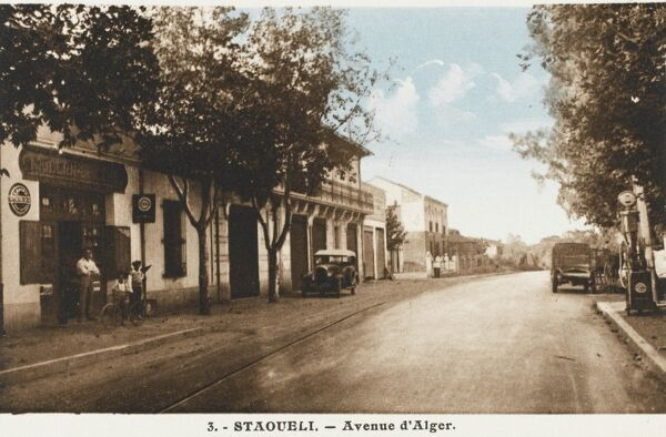 The Algiers Avenue, Staoueli. There was a motor racing circuit here and a Grand Prix was held at Staoueli between 1928-30