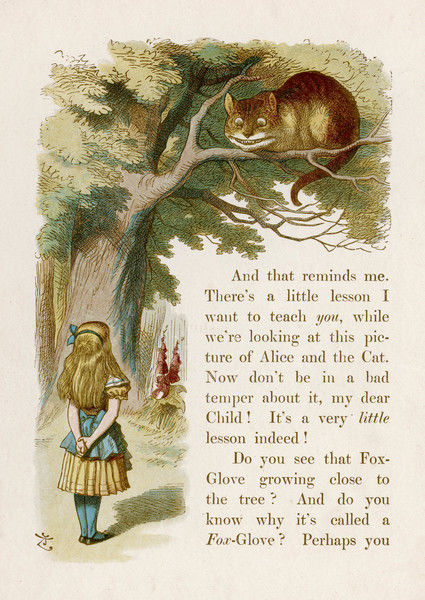 Alice and the Cheshire Cat -- 'We're all mad here,' said the Cat. 'I'm mad. You're mad.&#39