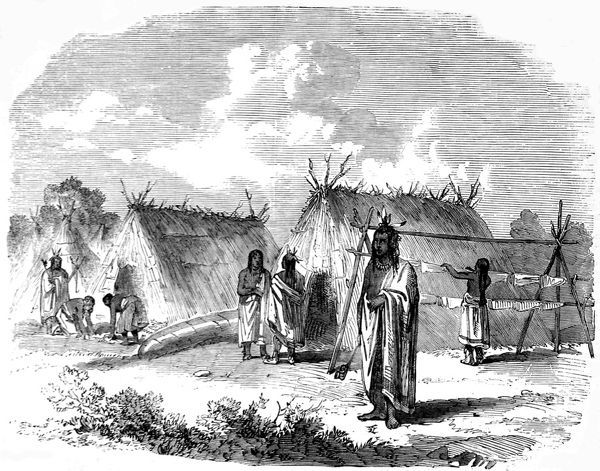 Ojibway Indians, wearing wraps and feathers in their hair, with thatch triangular huts in the background and what looks like a washing line. The Canadian government funded several expeditions to chart the Red River area in the late 1850's