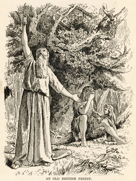 Ancient British Druid picks mistletoe with his Golden Sickle and makes an incantation toward the sky
