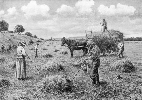 French-Canadian farmworkers pause in their labours when the 'angelus' sounds Date: late 19th century