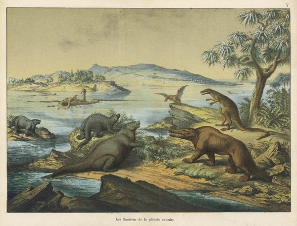 Scene and landscape, with animals, during the Cretaceous (post-Jurassic) era in southern England