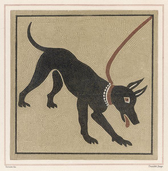 A mosaic of a Roman dog on a lead