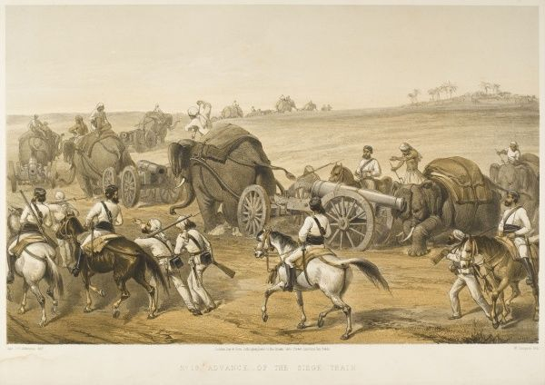 Elephants are used to haul artillery, forming a 'siege train', during the Indian Mutiny