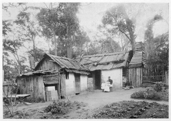 A settler's home in the Australian bush