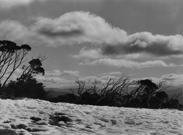 This is not a raging torrent, as it would appear on first glance, but thick snow on Mount Hotham, Victoria, Australia. Date: 1930s