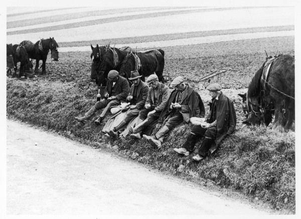 Ploughman's Lunch; farmworkers on the Wiltshire Downs enjoy their mid-day break