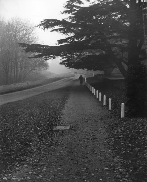 Autumn evening, a roadside scene at Hadley, Hertfordshire, England. Date: 1950s