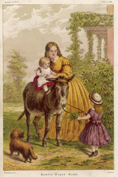 'BABY'S FIRST RIDE' - mama holds baby on the donkey's back, while sister holds the reins and clutches some leaves to reward the animal which is apprensively eyeing the dog