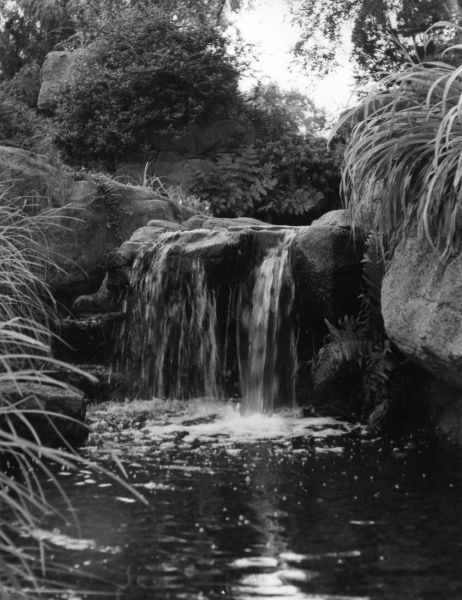 The picturesque waterfall, one of the attractions in the Rock Garden at Battersea Park, London. Date: 1950s