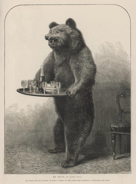 Lord Suffield, having shot this bear in Russia, subjects it to the further indignity of being stuffed by Mr Ward and made to serve as a dumb waiter