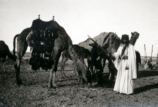 A Bedouin man with a rifle and two camels, in the desert somewhere in the Middle East