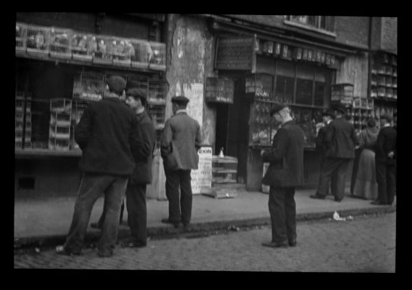 Men standing in the roadway outside a bird market in the East End of London. The birds are on display in numerous cages. This was possibly in Sclater Street, Shoreditch, near Bethnal Green, where a bird market took place every Sunday