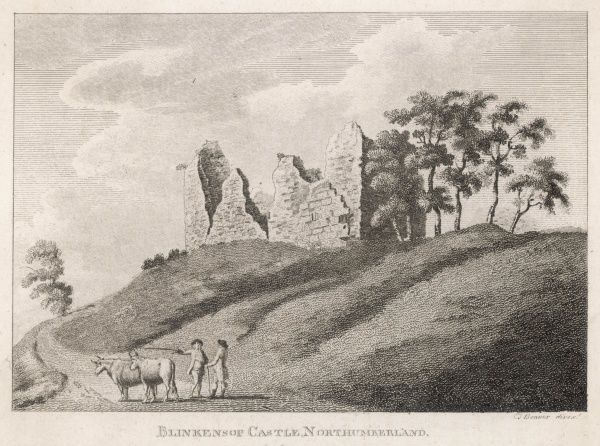 The ruins of Blenkinsop Castle, Northumberland