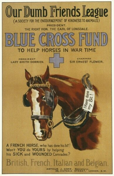 "Fundraising poster during WWI for the Blue Cross Fund organised by the Dumb Friends' League featuring a French horse who is ""doing his bit&quot"