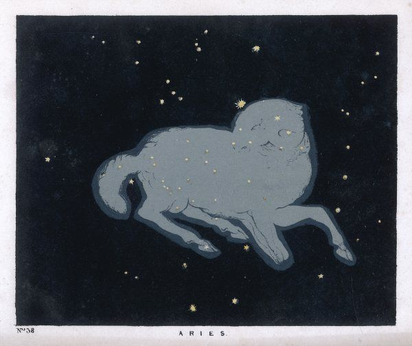 The constellation of Aries, a ram in a sitting posture
